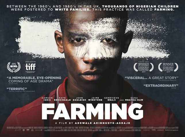 Akinnuoye-Agbaje's Movie Debut – Farming, Coming to Nigeria Cinemas